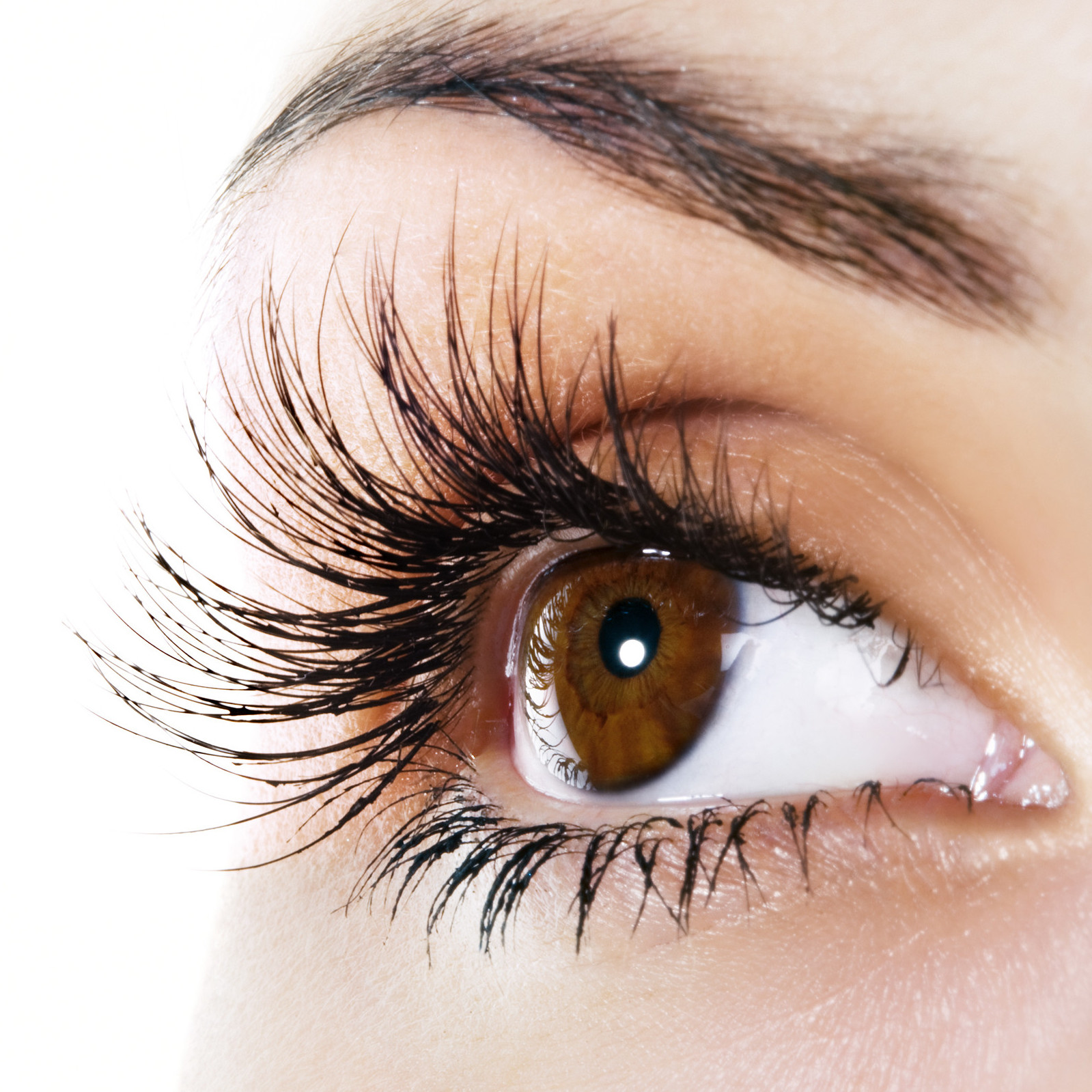 Best Natural Eyelashes Review